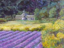 Картина «Хочу туда» (Виноградники) — холст, масло, живопись